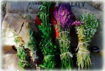 Lorna_herb_bundles