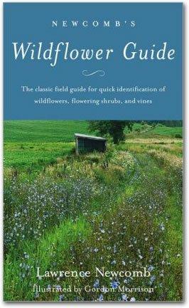 wildflower book